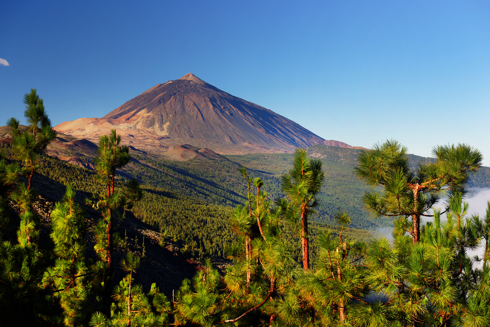 Vulkanudflugt til Teide på Tenerife er det hele værd