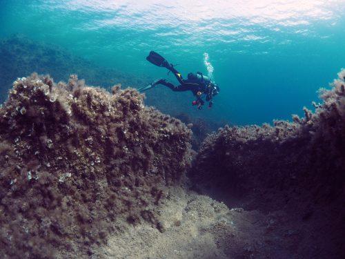 Begivenhedsrig dykkerferie på Malta