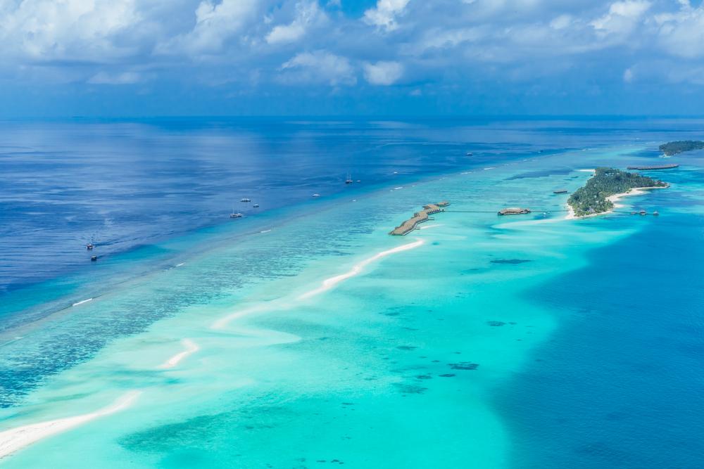 Oplev undervandslivet på din rejse til Maldiverne