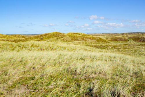 Tag på opdagelse i Danmarks smukke natur